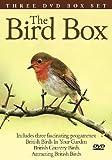 Bird Box poster thumbnail