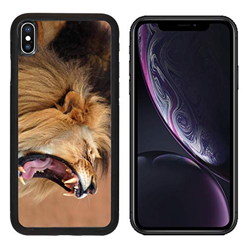 Luxlady Apple iPhone XR Case Aluminum Backplate Bumper Snap Cases Male African Lion Panthera Leo in Africa Image ID - Leo Lion Panthera African