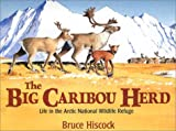 The Big Caribou Herd, Bruce Hiscock, 1590780108