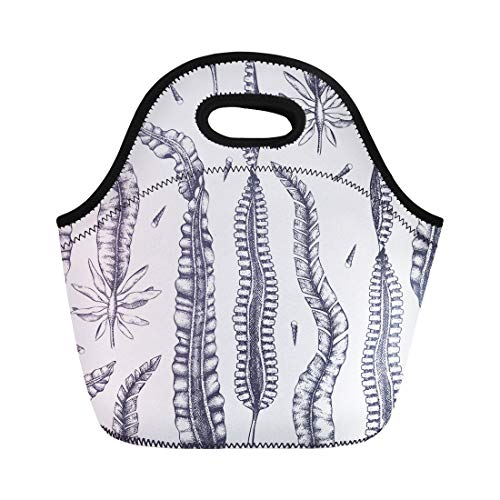 Semtomn Lunch Tote Bag Ink Laminaria Sketch Sweet Sea Tangle Japan Kelp Alaria Reusable Neoprene Insulated Thermal Outdoor Picnic Lunchbox for Men ()