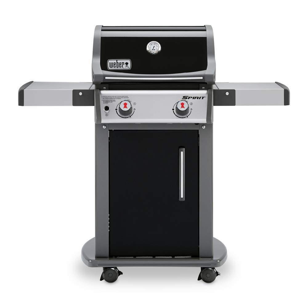 Weber 46110001 Spirit E-210 LP Gas Grill, Black