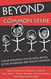 Beyond Common Sense 9780202307343
