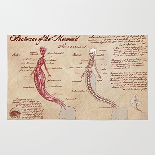 Society6 Anatomy Of The Mermaid Rug 4' x 6