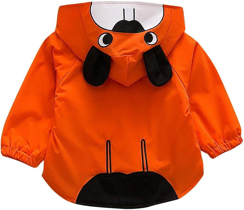 Toddler Infant Baby Boys Clothes Bear Printed Long Sleeve Hoodie Tops Sweatshirt
