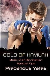 Gold of Havilah
