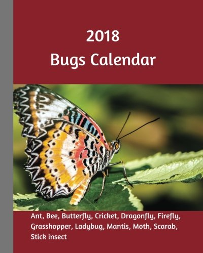 2018 Bugs Calendar: 2018 Monthly Calendar with USA Holidays, 12 bugs, 24 +2 Full Color Insect Photos For Kids, 8 x 10 in, 16K size