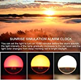Wake- Up Light, LBell 7 Colored Night Light/Sunrise Simulation & Sleep Aid, Dual Alarm Clock with FM Radio, 7 Natural Sounds and Snooze for Kids Adults Bedrooms/Night Light Ambiance