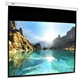 100-inch (4:3) Electric Projection Screen - International Version (No Warranty) - DIY Series - White (P100-IV)