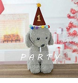 Yang Cupyan - Sombrero de Fiesta de cumpleaños para Perro ...