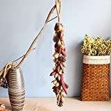 Better-way Handmade 31.5 Inch Mixed Nuts, Chili and Snowy Pine Cones Artificial Christmas Teardrop Swag