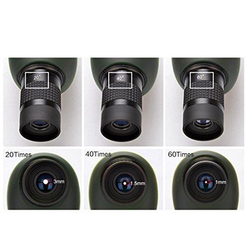 20–60x 60Zoom Télescope monoculaire 45coudée oculaire–étanche et antibuée avec trépied Vert armée
