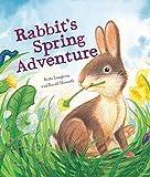 Rabbit's Spring Adventure (Animal Seasons)