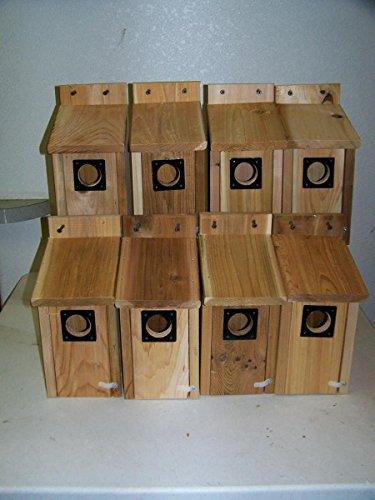8 bluebird houses cedar metal predator guard ez open handmade Cedar Predator Guard