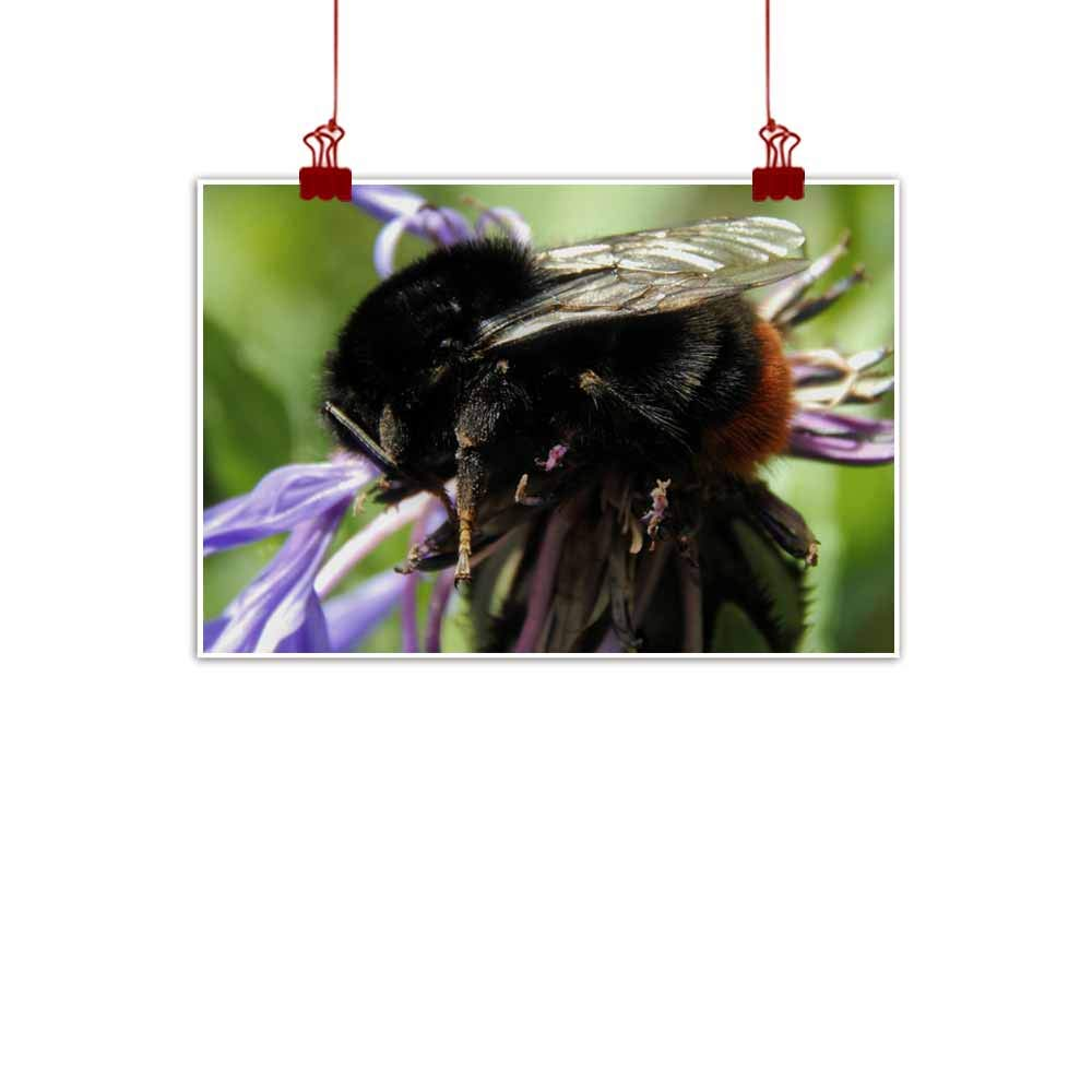 Black Bumble Bee >> Amazon Com Duommhome Modern Oil Paintings Big Black Bumble