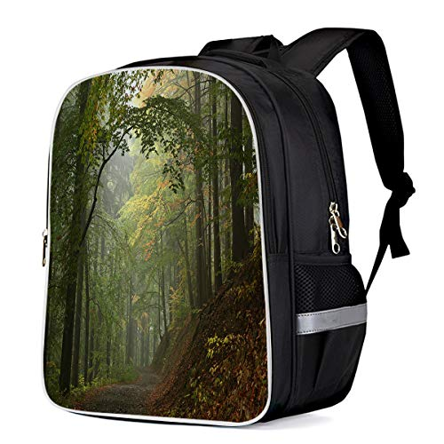 Unisex Durable School Backpack- Primeval Forest Path, Lightweight Oxford Fabric School Bags with Reflective Strip Daypack Laptop Bags