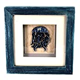 StealStreet LHE-791 Ss-Ug-Lhe-791, 6'' Jellyfish Aquatic Life Shadowbox Decorative Frame, Blue