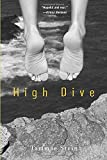 img - for High Dive book / textbook / text book