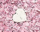 Truth & Love Beauty Rose Honey Shampoo Bar for