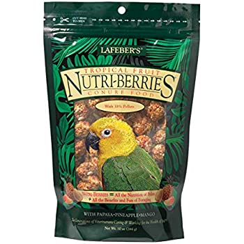 LAFEBER'S Tropical Fruit Nutri-Berries Conure Food, Made with Non-GMO and Human-Grade Ingredients, for Conures, 10 oz