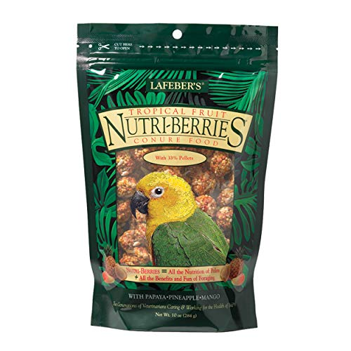 (LAFEBER'S Tropical Fruit Nutri-Berries Conure Food, Made with Non-GMO and Human-Grade Ingredients, for Conures, 10 oz)