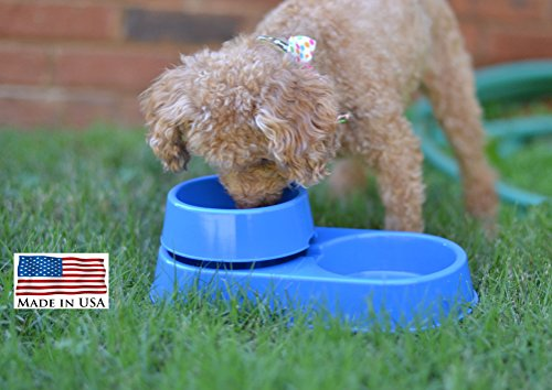 The 3-in-1 Ant Free Pet Dish  Ant Free Pet Bowl
