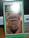 African apes and how they live / vhs