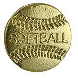 Set of 100 Chenille Pins - Softball offers