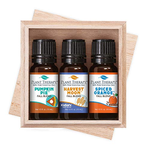 Plant Therapy Autumn Treasures Fall Blend Set