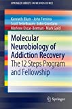 img - for Molecular Neurobiology of Addiction Recovery: The 12 Steps Program and Fellowship (SpringerBriefs in Neuroscience) book / textbook / text book