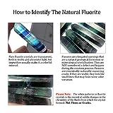 CrystalTears Set of 3 Natural Fluorite Self