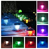 Coquimbo Solar Floating Light for Pool Pond Waterproof ABS Plastic with Color Changing