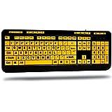 Adesso AKB-132UY - Luminous 4 X Large Print Multimedia Desktop USB Keyboard