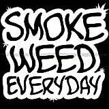 Smoke Weed Everyday Die Cut Vinyl Car Decal Window Sticker