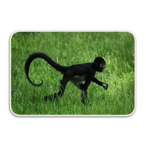 Spider Monkey Front - Non Slip Backing Doormat Animal Monkey Spider Printed Indoor/Outdoor/Front Door/Bathroom Entrance Mat Rugs