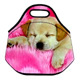 (Sleeping Puppy) 3.5MM Thick Neoprene Lunch Bag/Lunch Tote, Insulated | Stretchy | Reusable | Washable | Rugged Zipper | Great For Lunchboxes & Snacks By Selric