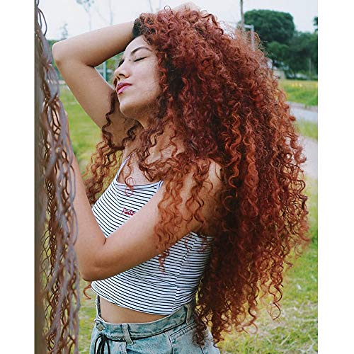 (Ombre Dark Auburn Curly Wig Evlynn Hair Lace Front Wigs Synthetic Black Loose Curly Wigs Heavy Density Glueless Lace Wigs for Women(24
