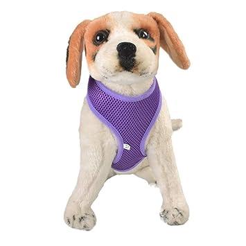 YXRZBH Arnés para Perros Ajustable Acolchado y Ajustable para ...