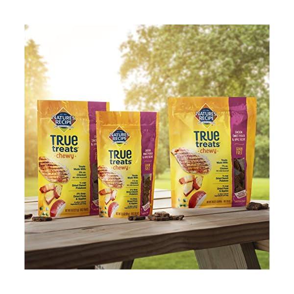 Nature's Recipe True Treats Dog Treats, Grain Free