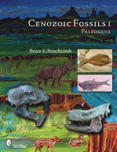 Cenozoic Fossils 1: Paleogene by Bruce L. Stinchcomb (2010) Paperback (Fossil Legends)