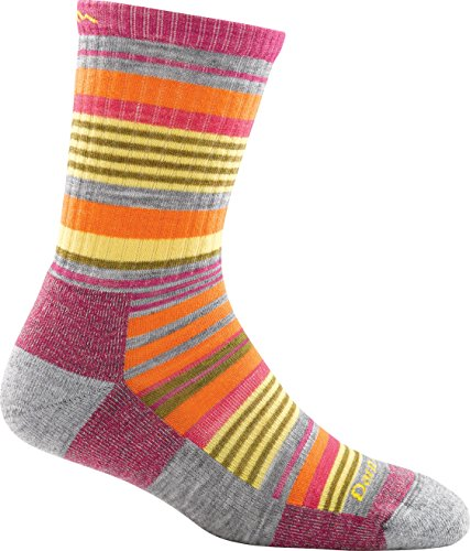 Junior Socks Trail (Darn Tough Vermont Women's Sierra Stripe Micro Light Cushion Socks, Light Gray, S)