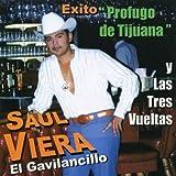El Gavilancillo