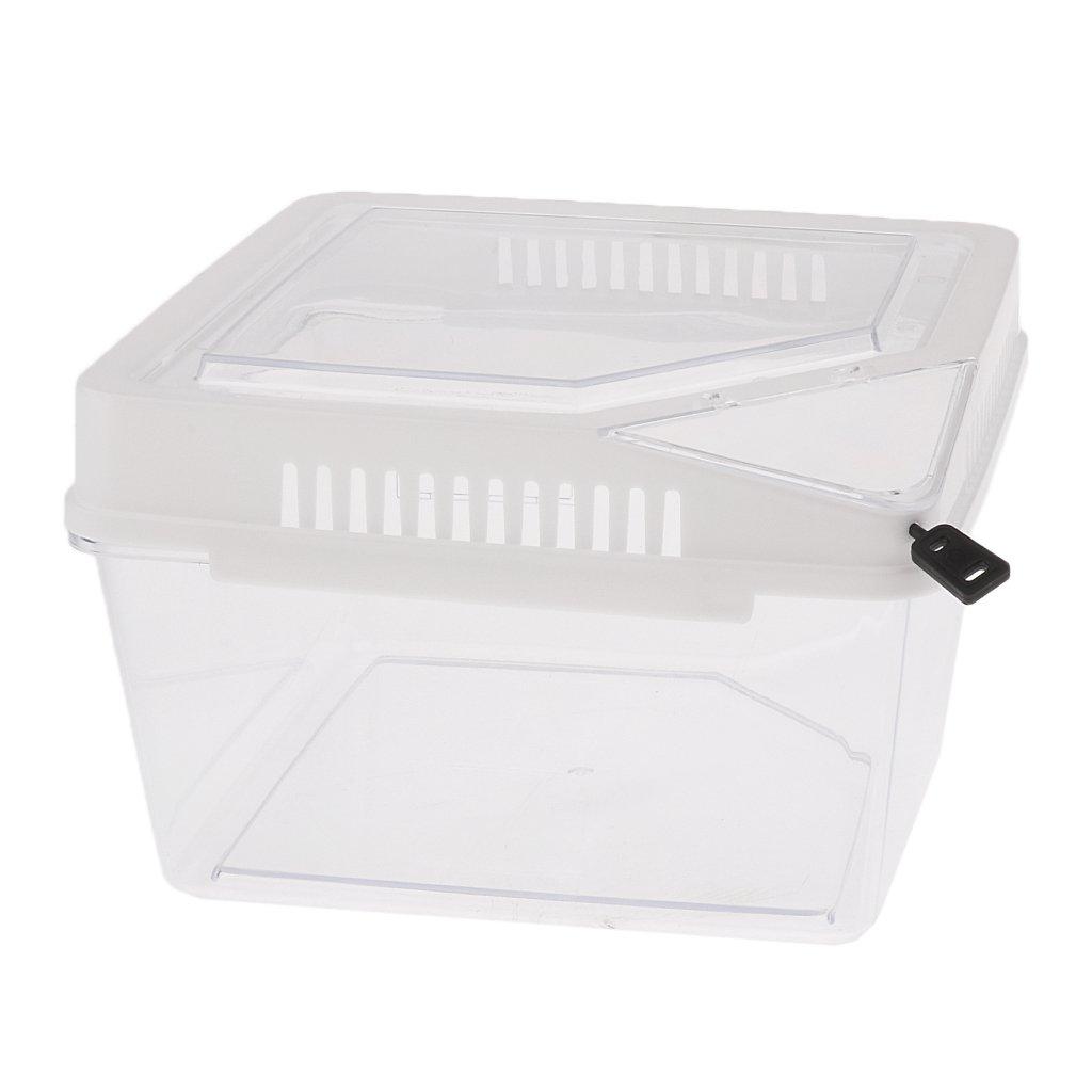magideal Pet Reptilien Amphibien Käfig Füttern Zucht Box mit Thermometer Halterung Loch für Spider Insekten Eidechse Frosch Nagetier Habitat