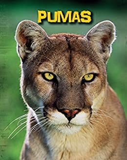 Pumas (Living in the Wild: Big Cats) - Kindle edition by