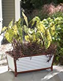 Galvanized Self-Watering Trough Planter, Short