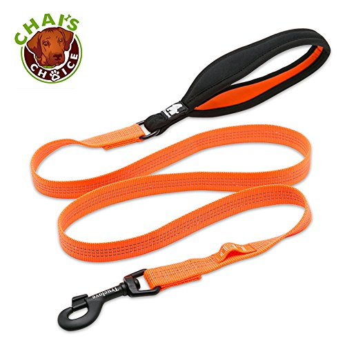 Chais Choice Best New 2018! Outdoor Adventure II Dog Leash. 3M Reflective with Soft Sponge Handle. Matching Harness Available. (Large, Orange)