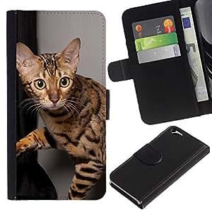 KLONGSHOP // Tirón de la caja Cartera de cuero con ranuras para tarjetas - Gato Ocicat Pelo Corto Bengala Savannah - Apple Iphone 6 //