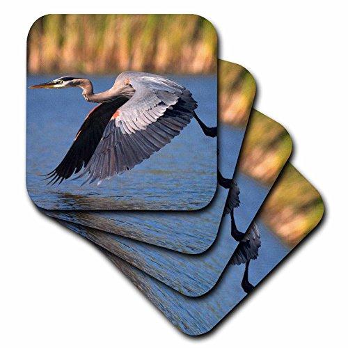 3dRose CST_205397_3 USA, California, San Diego, Lakeside Great Blue Heron Flying Ceramic Tile Coaster (Set of 4) ()