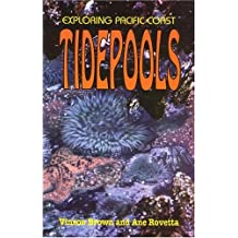 Exploring Pacific Coast Tidepools