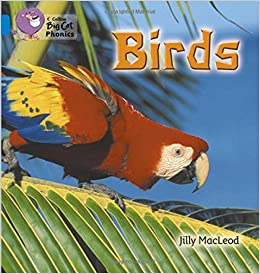Descargar Epub Birds: Introducing All Manner Of Birds In This Photographic Book (collins Big Cat Phonics): Blue/band 4