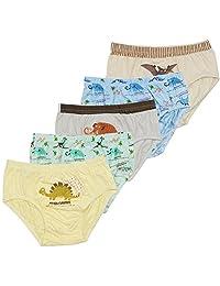 BOOPH Little Toddler Boys'Dinosaur Cotton Underwear Briefs 5 Pack 2-12t